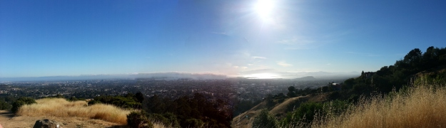 The View from Claremont Canyon Trail